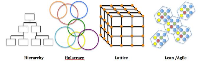 Modern Organization Structures